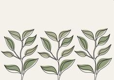 Plants   iPad screensavers