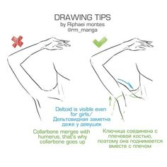 Anatomy Drawing Tutorial Find out about Drawing Check the webpage to find out more. - Figure drawing is challenging. The act of rendering the human form accurately on paper can be intimidating and frustrating if you try to tackle everything all Drawing Skills, Drawing Poses, Drawing Techniques, Drawing Tips, Figure Drawing, Sketching Tips, Drawing Style, Drawing Ideas, Neck Drawing