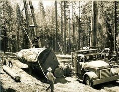 (click to enlarge) One of Doc's GMC trucks being loaded with a big log. Notice the smaller log being used as a device to enable rolling the big log onto the truck. Roy Armstrong is the crane operator. We don't know who the other fellows are. This seems like an appropriate time to give a little history about Doc and his equipment. This was first... VIEW DETAILS