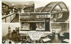 Notarianni Sunderland