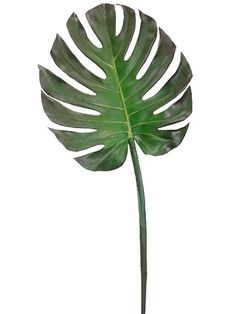 Artificial tropical greenery for your DIY home centerpieces like this gorgeous, large monstera leaf in green with brown accents. This tropical leaf spray is perfect to create a dramatic, exotic look f                                                                                                                                                                                 More