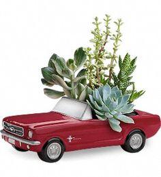 Dream Wheels '65 Ford Mustang in Metairie LA, Villere's Florist