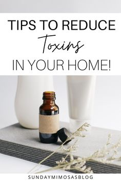 Want to make the switch to non-toxic living, but don't know where to start? Read this post to learn my top nontoxic living tips and how you can switch to non-toxic products easily! Start making safe swaps now and create a natural, clean, toxin free home for your family in no time! #cleanliving #nontoxic #ecofriendly #toxicfree