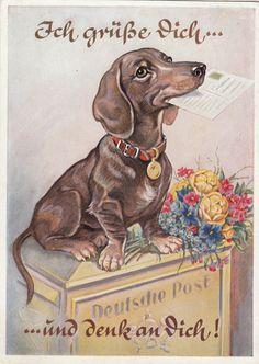 AK Dackel mit Brief und Blumenstrauß sitzt auf Briefkasten +