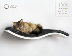 Solid white cat perch with black cushion