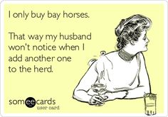 I only buy bay horses... that way my husband won't notice when I add another one to the herd ;).   ahahahahahahahahaaha
