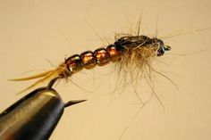 This little pattern will sink just like a beadhead and will imitate the colors a golden stone nymph has, almost to perfection. Follow the tying sequences in the article to make your own! Steve Schweitzer has created another killer!