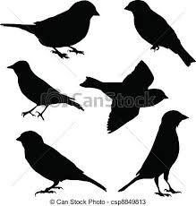 Resultado de imagem para desenhos de pardais