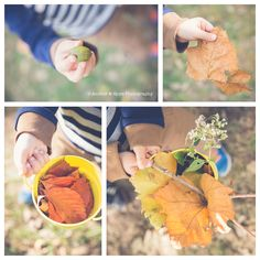 Kansas City Lifestyle Photographer. Fall In The Eyes Of A Little Boy. Fall Leaves. Childhood.