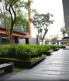 coyoacán corporate campus landscape by dlc architects에 대한 이미지 검색결과