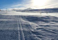 På fjellets topp. Snøen stryker over vidda og sletter ut alle spor.
