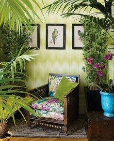 Osborne and Little Fabric Cubana Matthew Williamson Danzon wallpaper available at Dean Warren, Scottsdale Colonial Style, Decor, House Interior, Bedroom Decor, Tropical Home Decor, Interior, Tropical Interior, Colonial Decor, Home Decor