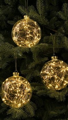 Really wish it could snow❄️❄️ Blue Christmas Lights, Christmas Globes, Christmas Rose, Christian Christmas, Christmas Wishes, Winter Christmas, Christmas Themes, Christmas Bulbs, Christmas Decorations