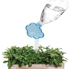 Rainmaker Plant Watering Cloud - ensure house plants are treated to their daily dose of watering in a way that resembles their natural habitat #ad