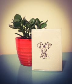 New collections coming soon! Planter Pots, Greeting Cards, Collections, Fun, Plant Pots, Lol, Funny