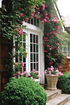 Garden Cottage, Rose Cottage, Home And Garden, Rose Garden Design, Climbing Roses, Dream Garden, Pink Garden, Garden Inspiration, Beautiful Gardens