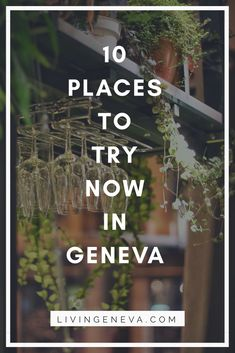 10 places that are always worth a visit in Geneva. Wether they have been there for 5 years or 2 months, these places are a must try Geneva Restaurant, Speakeasy Restaurant, Organic Wine, Cafe Art, Kids On The Block, Four Seasons Hotel, First Dates, 2 Months, Going Crazy