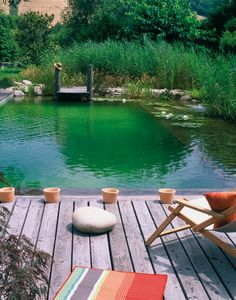 natural pool/piscine naturelle - If I ever have a pool, it'll be a natural one. Better looking, no chemical and easier to maintain (no change of water needed)