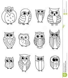 For sibling owls