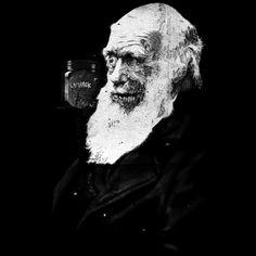 Camiseta 'Darwin's Evolution '. http://cami.st/p/1715