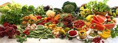 bio-vegsalus: Diete Vegetariane prospettiva nutrizionale nel ciclo vitale