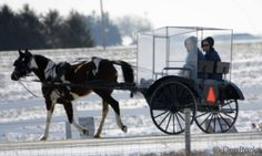 Kalona, Iowa: even the Amish change things up now and then. This is new in this area but several have been seen.