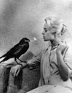"#vintage #smoking from the set of Alfred Hitchcock's ""The Birds."" These two castmates were great friends despite playing bitter enemies!"