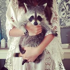 This Adorable Rescued Raccoon Thinks She's a Dog