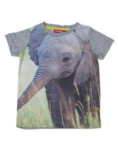 Someone Kids - Mixed grey T-shirt with elephant print - Pepatino.be