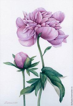 Dusty rose Peonies. Traditional art ( watercolor). Prof. paper: Fonteney 300 g/м2 (cotton). Svetlana Markina (LechuzaS) Size: 18cm*26cm