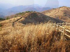 Mindungsan Mountain - Gangwon