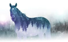 Today's Psychic Tip Tip Of The Day, Tarot, Moose Art, Core, Tips, Animals, Animais, Animales, Advice