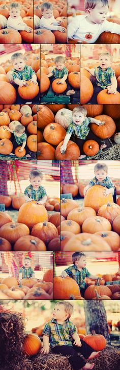 toddler pumpkin patch