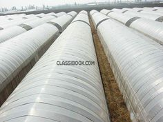 listing Single Span Film Greenhouse is published on FREE CLASSIFIEDS INDIA - http://classibook.com/hercules-in-bombooflat-33798