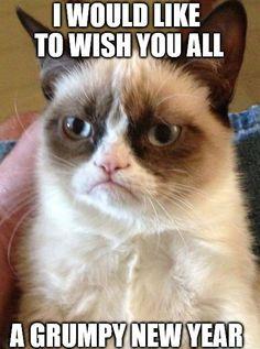 Cat New Year Meme happy year grumpy cat meme Source: website alicia nelson Source: website funny years resolution memes post social . Grumpy Cat Quotes, Funny Grumpy Cat Memes, Funny Animal Memes, Funny Memes, Grumpy Cats, Rude Meme, Hilarious Jokes, Memes Humor, Videos Funny
