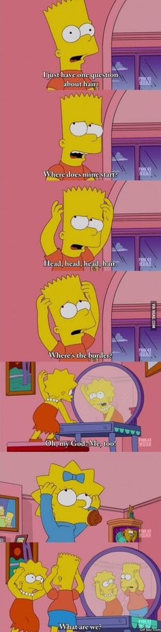 Breaking the fourth wall.. ahh The Simpsons