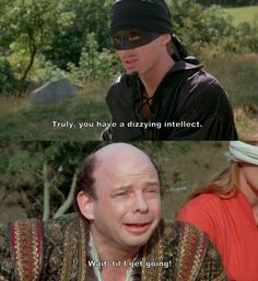 """""""Truly, you have a dizzying intellect."""" (The Princess Bride)"""