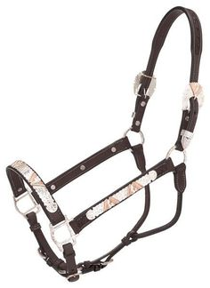 Silver Royal Dark Oil Premium Classic Silver Copper V Show Horse Halter for sale online Horse Bridle, Cat Harness, Service Dogs, Things To Buy, Shank, Copper, Horses, Classic, Silver