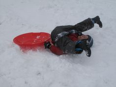 Snow Sledding and Tubing for Los Angeles and SoCal Kids