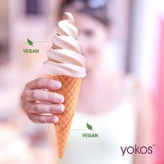A Look At Yokos' Vegan Cultured Coconut And Oat Yoghurts In Cape Town! | FitNish.com Yoko, Cape Town, Coconut, Ice Cream, Posts, Vegan, Desserts, Blog, No Churn Ice Cream