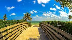 Miami Beach Hotels on the Beach :https://miamibeachadvisor.com/oceanfront-hotels/