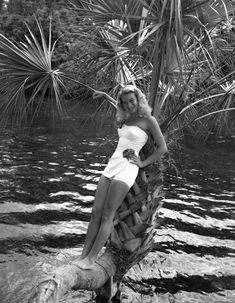 Ginger Stanley posing on the lucky horseshoe palm tree at Silver Springs (ca. Photo by Bruce Mozert. Lucky Horseshoe, Central Florida, Palm Trees, Memories, Explore, Beach, Vintage, Silver, Palm Plants