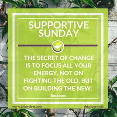 Supportive Sunday - The secret of change is to focus all your energy, not on fighting the old, but on building the new.