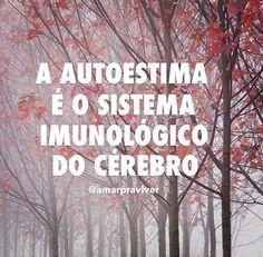 A autoestima é o sistema imunológico do cérebro.