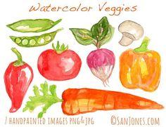 Watercolor Clipart  Watercolor Vegetable Clip art  by sanjones