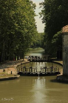 My childhood romping grounds! Monaco, Le Canal Du Midi, Sites Touristiques, Area Map, Canal Boat, Stuff To Do, Places Ive Been, Beautiful Places, Places To Visit