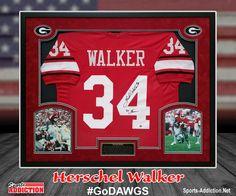 Herschel Walker Autographed Georgia Bulldogs Custom Jersey Baseball  Jackets bf89a7a3d