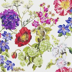 Make a bold statement with this Alexandria wallpaper from Designers Guild. Part of the Alexandria collection this gorgeous botanical wallpaper features cow parsley & poppies against a variety of softl Flowers Wallpaper, Botanical Wallpaper, Wallpaper Roll, Pattern Wallpaper, Kids Wallpaper, Designers Guild Wallpaper, Designer Wallpaper, Free Wallpaper Samples, Wallpaper Online