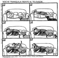 Ilustrações retratam a divertida convivência entre cachorros e seus donos