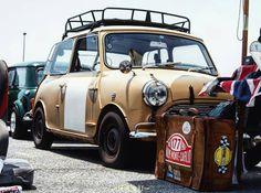 Mini Cooper Classic, Mini Cooper S, Classic Mini, Rover Mini Cooper, Vintage Cars, Antique Cars, Mini Morris, Ford Classic Cars, Minis